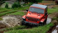 Jeep Kenalkan Wrangler Rubicon Rp 1,6 M dan Gladiator Rp 1,708 M