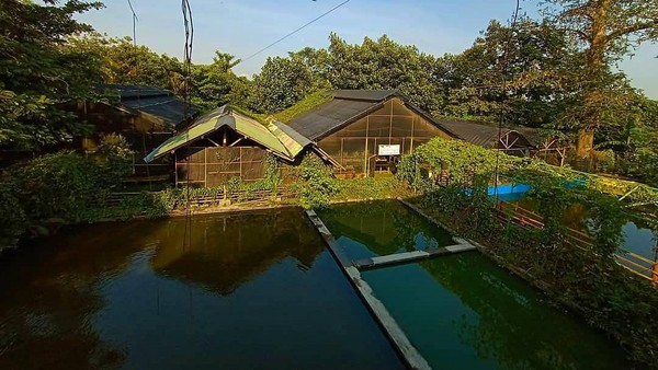 Suasananya pun sejuk, karena objek wisata Kampoeng Anggrek terletak tujh kilometer dari punak Gunung Kelud. (Kampoeng Anggrek Kediri/instagram)