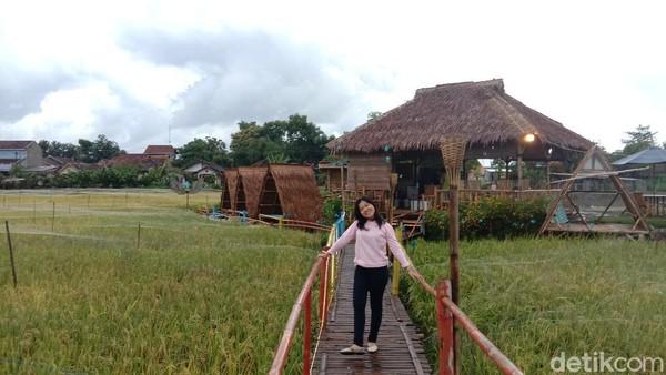 Hamparan padi berwarna hijau di pedesaan menjadi daya tarik sendiri bagi wisatawan. Tidak hanya itu, di kafe tengah sawah itu juga menyediakan sejumlah spot untuk berfoto.