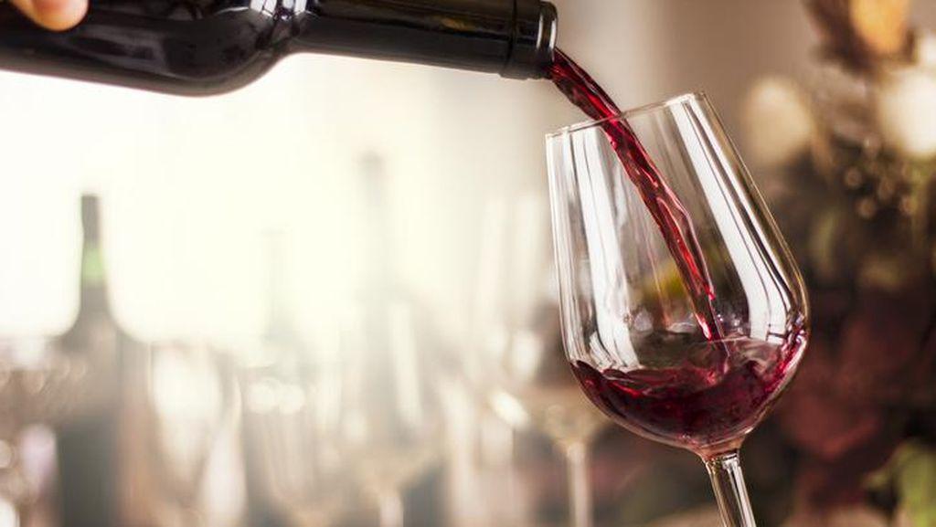 Sadis! China Kenakan Bea Masuk 218% buat Wine Australia