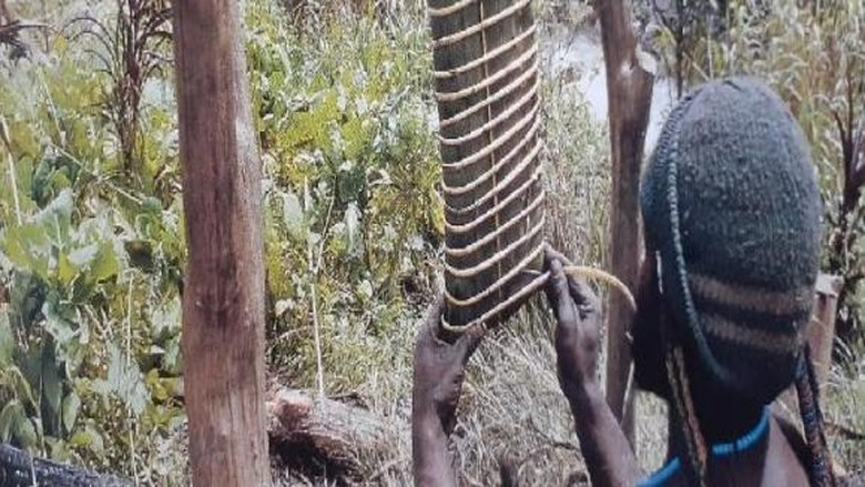 Garam Abu Papua