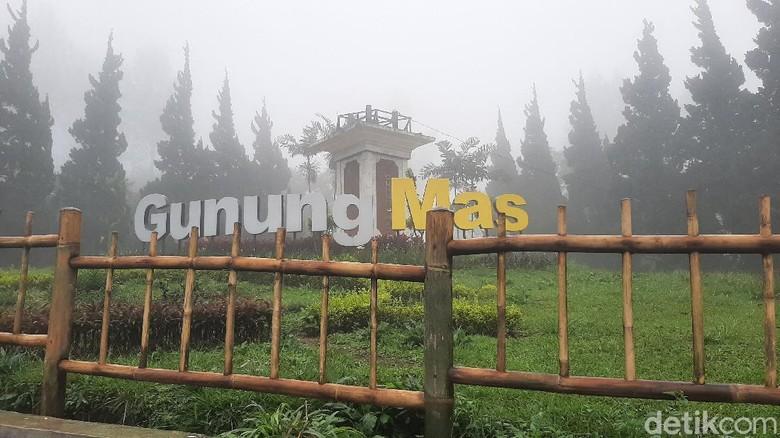 Agrowisata Gunung Mas, Puncak Bogor buka lagi mulai 1 Februari usai banjir bandang.