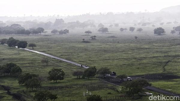 Hamparan padang sabana Bekol seluas sekitar 300 hektar sangat memanjakan mata
