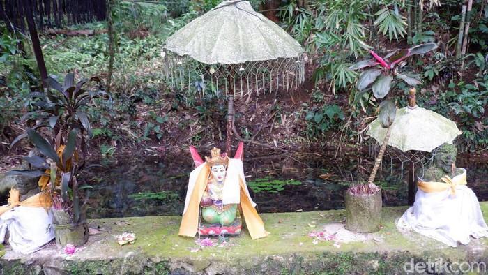 Rowo Bayu, Tempat Angker Yang Merupakan Lokasi Perang Puputan Bayu