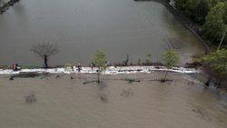 Abrasi Pantai di Indramayu Berpotensi Merusak Lahan Pertanian