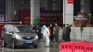 Tim WHO Kunjungi Pasar di Wuhan untuk Selidiki Asal-usul Corona