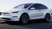 Tesla Pilih Bikin Pabrik Mobil Listrik di India, Begini Kata Luhut