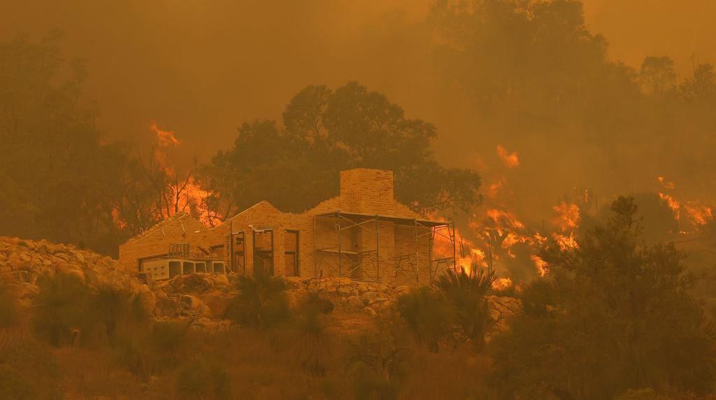 Kebakaran Hutan di Australia Hancurkan 81 Rumah