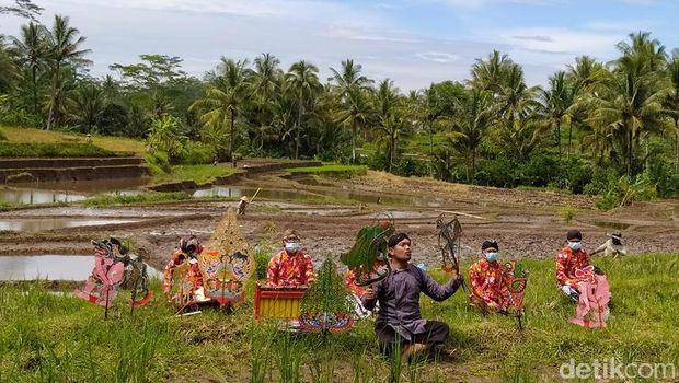 Pementasan Wayang Serangga di Lokasi Persawahan Magelang