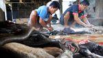 Melihat Pembuatan Kerupuk Kulit di Aceh