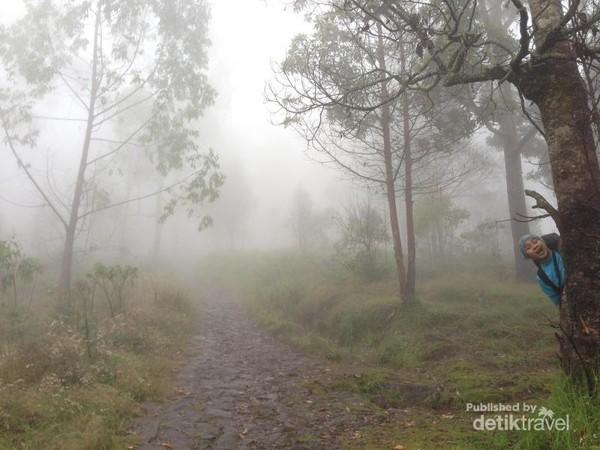 Tebalnya kabut saat memulai pendakian Gunung Lawu via Cemoro Sewu.
