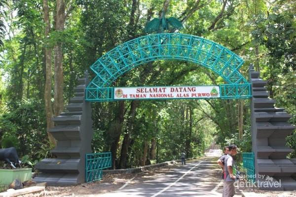 Pintu gerbang TN Alas Purwo.