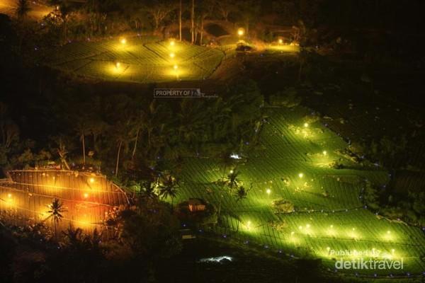 Begini penampakan dari dekat lampu-lampu kebun bawang milik warga.