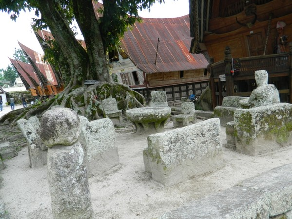 Batu Parsidangan dan Pohon Hariara