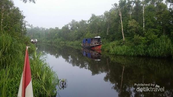 Suasana pagi hari, saat kapal masih merapat salah satu sisi Sungai Sekonyer