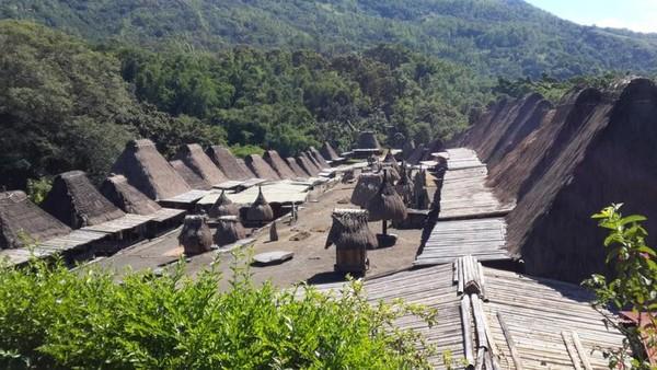 Kampung Bena di perkirakan sudah ada sejak 1200 tahun yang lalu