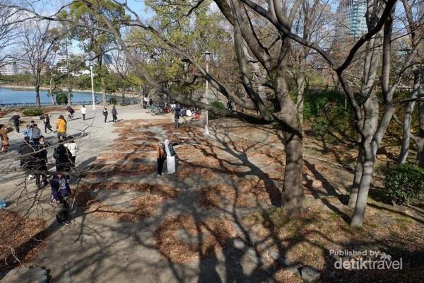 Banyaknya para turis baik dari dalam maupun luar negeri yang sampai mengantri untuk berfoto bersama karya seni Ochiba Art ini.