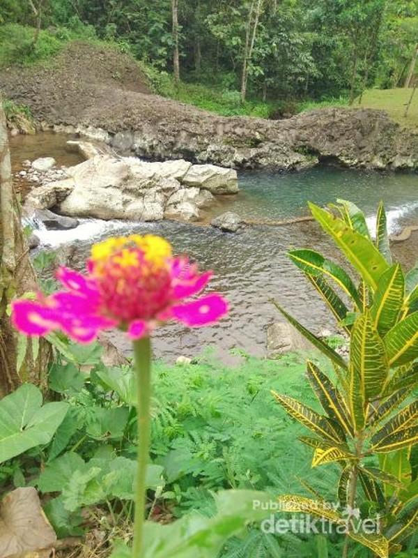 Airnya segar dan view-nya juga sangat indah.
