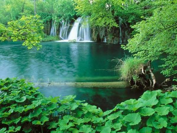Danau plitvice (Sumber: nature.desktopnexus.com)