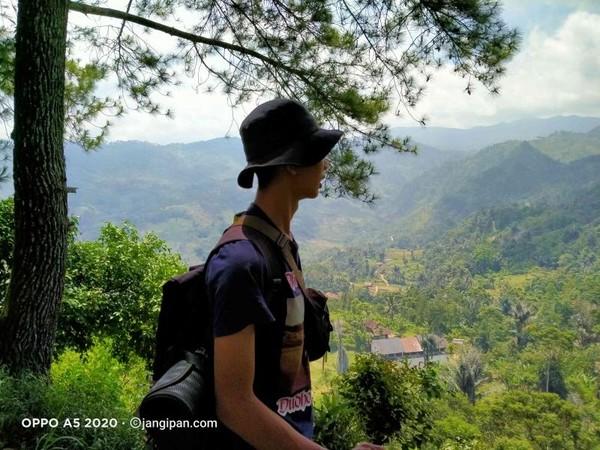 Destinasi wisata Hutan Pasir Pinus