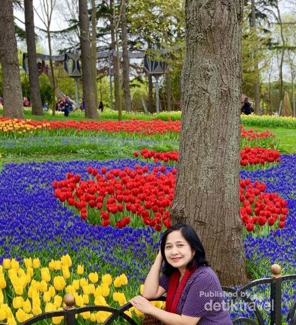 Emirgan Korusu (Taman Bunga Tulip) terbesar di Turki
