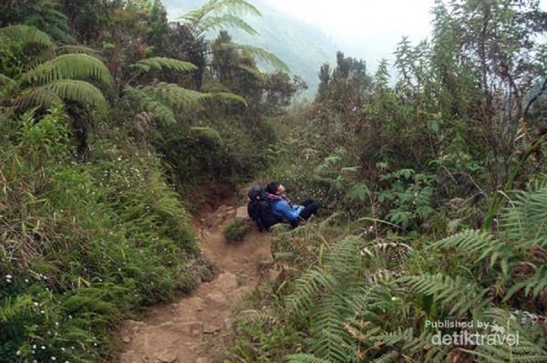 Pendakian Gunung Prau Jalur Dieng