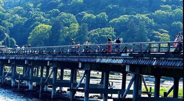 Jembatan Togetsu Kyo yang berada sekitar hutan bambu Arashiyama