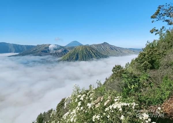 Kabut tebal terlihat menutup areal Lautan Pasir di sekitar Kawah Bromo.