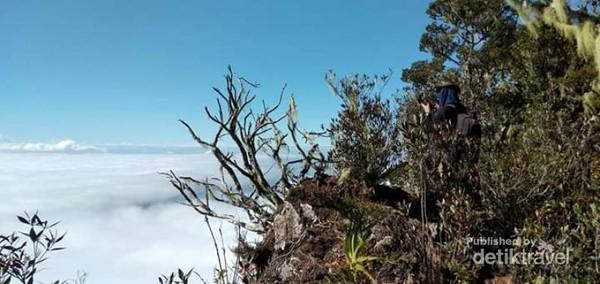 Salah satu spot foto di jalur pendakian