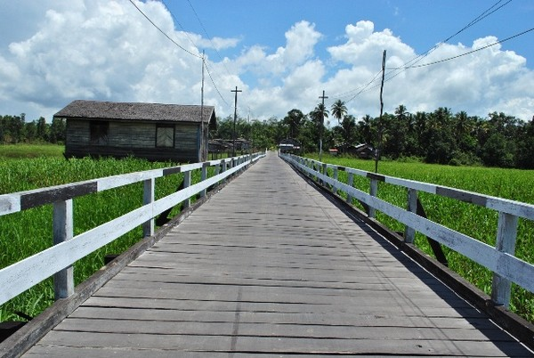 Jembatan Kayu Ulin di Tanjung Isuy