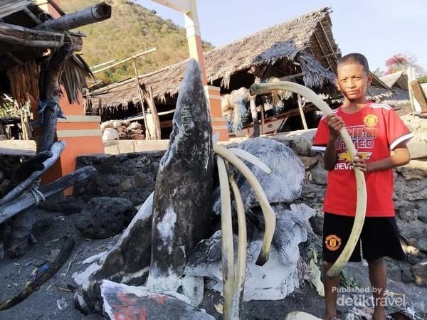 Warga Kota Kupang saat bertamasyah ke Lamalera, Lembata. Tampak tuluang rusuk Ikan Paus sedang dipegang oleh Santo, bocah kelas 5 SDK St Yoseph Kupang.