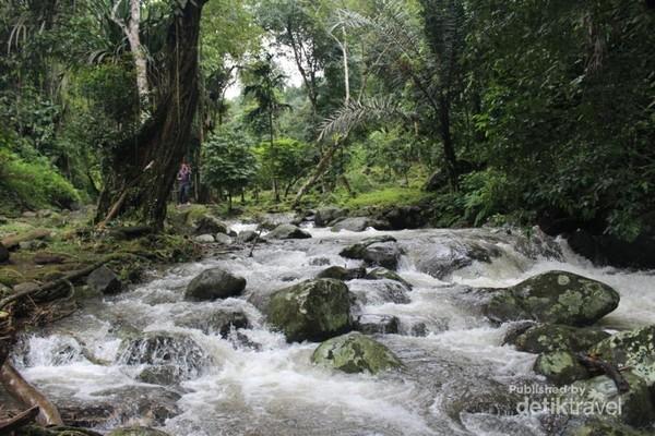 Sungai yang menyegarkan