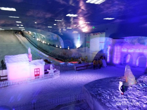 Area Ski - Alps Ice and Snow World