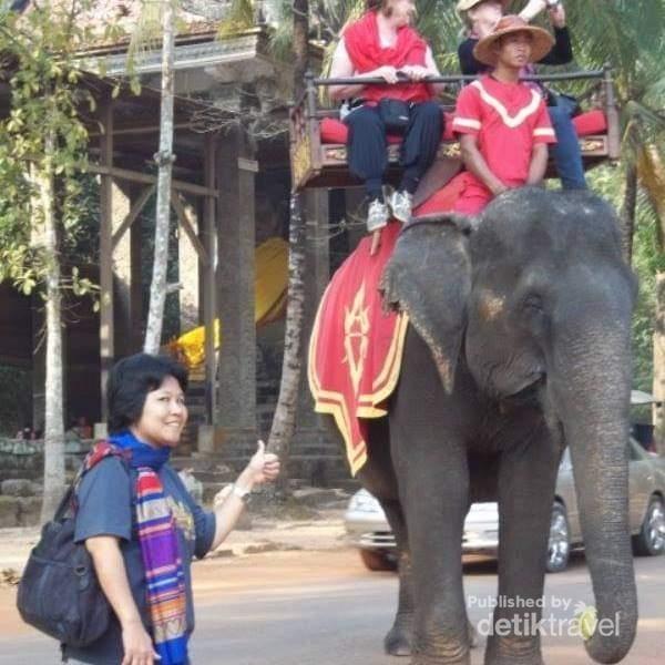 Gajah yang digunakan sebagai sarana wisata menikmati keindahan kuil-kuil sekitar Bayon temple.