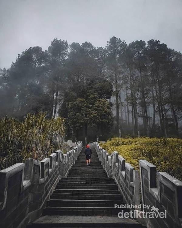 Trek Hikking untuk kegiatan joging.