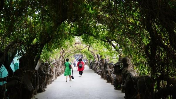 Jembatan akar menyambut pengunjung memasuki Dino Park