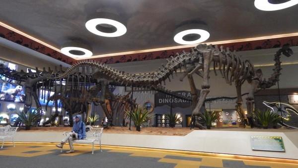 Replika kerangka dari berbagai jenis Dinosaurus dibangun dalam ukuran aslinya.