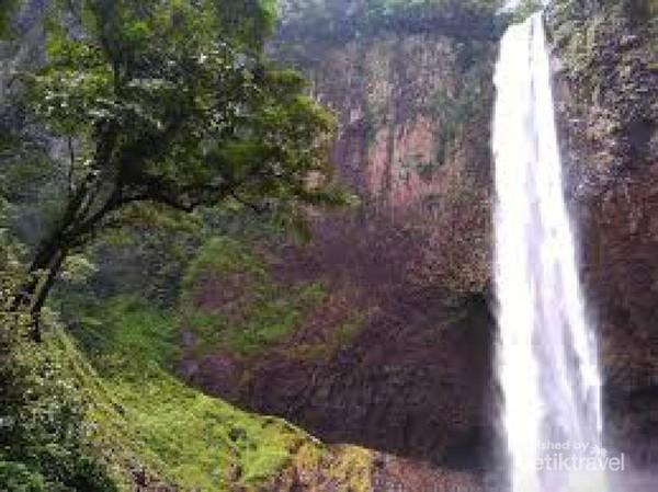 Alam sekitar air terjun Mandi Angin masih sangat alami.
