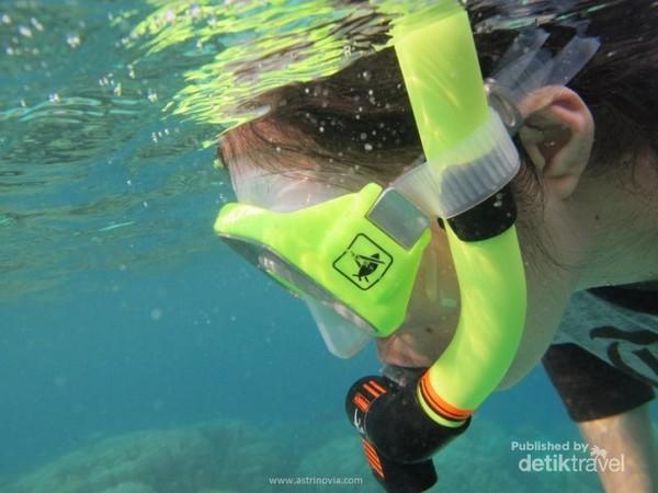 Snorkeling, menikmati terumbu karang di bawah laut