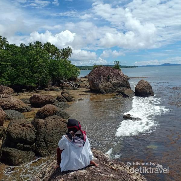 Selain batu, pantai ini juga dipenuhi hutan manggrove dan pohon kelapa