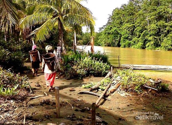 Di pelosok Maluku masih banyak dijumpai Saloi