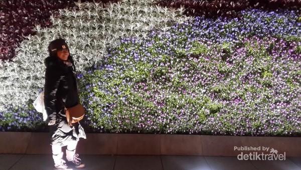 Bunga-bunga tersusun rapi dan cantik di area The bund,semuanya asli dan hidup