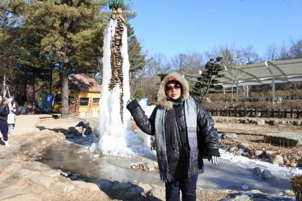 Suhu saat musim dingin bisa di bawah minum 11 derajat.