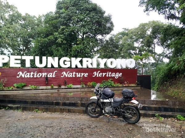 Di Petungkriyono kami menikmati indahnya pemandangan hutan hujan tropis.
