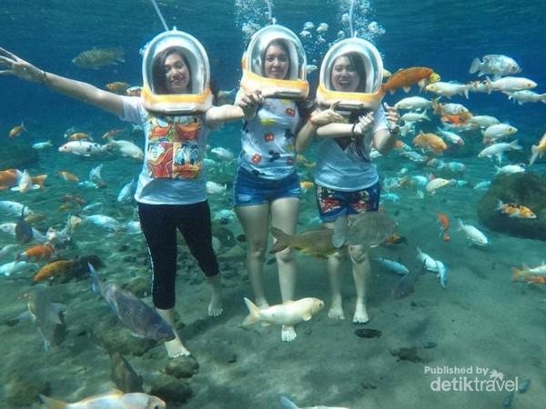 Foto Under Water ( Sumber Gambar , https://www.instagram.com/umbul_ponggok )