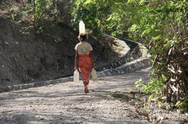 Salah seorang perempuan dari suku boti sedang memikul air untuk memenuhi kebutuhan keluarga.