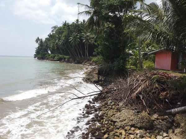 Pantai di sebelah tempat makan. Sayangnya tidak bisa menjadi tempat berenang