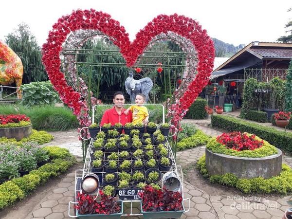 Di setiap kebun bunga yang ada di Lembang memiliki aneka spot foto yang menarik