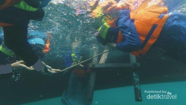 Air lautnya yang bening membuat foto di bawah permukaan air pun tetap indah