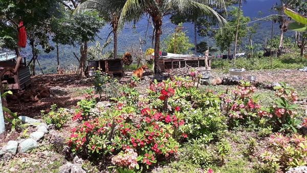 Di perbatasan RI-PNG, traveler dapat melintasi batas ke Papua Nugini tanpa paspor, tetapi hanya beberapa meter saja, sampai sebatas lokasi spot selfie ini. Di perbatasan, traveler juga dapat menikmati kuliner khas Papua Nugini. (Hari Suroto/Istimewa)